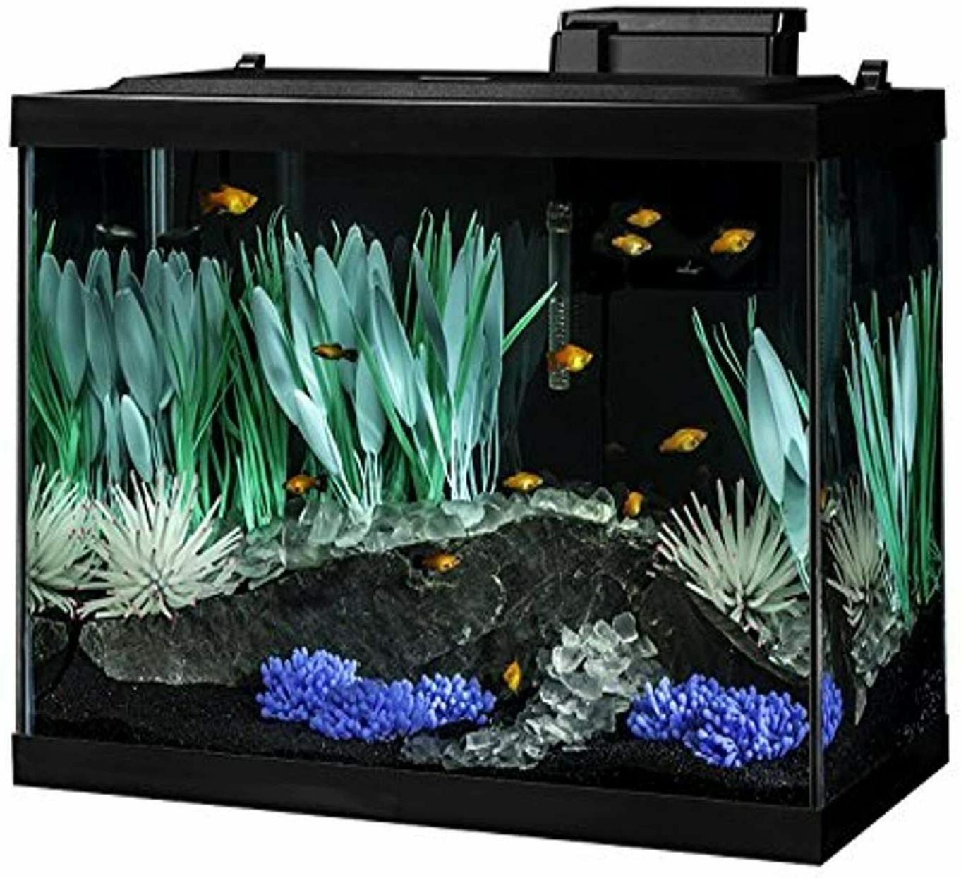 complete 20 gal fish aquarium tank kit