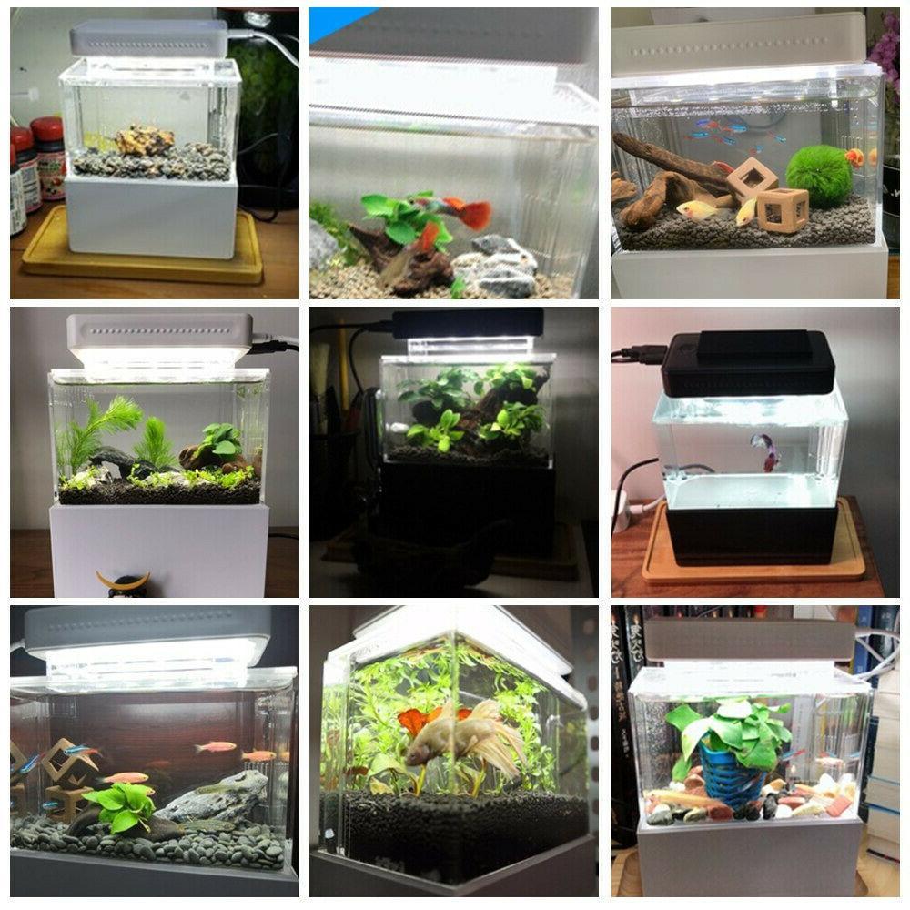 Fish Tank Aquarium Bowl with Water Quiet