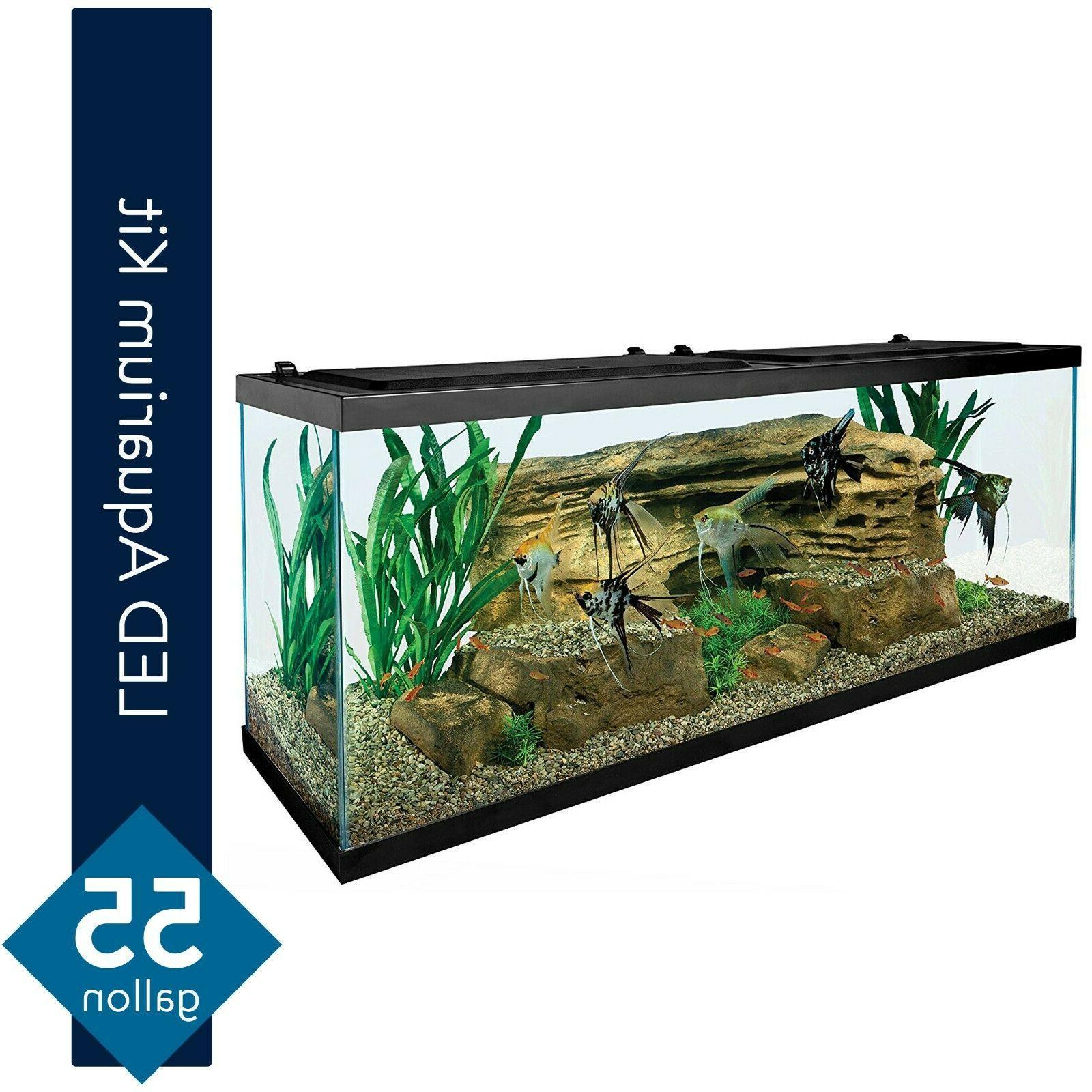tetra 55 gallon starter aquarium with net